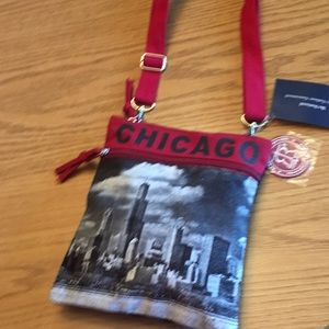 Robin Ruth Chicago bag.  New